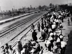 Transport: Rare photos captured the arrival of Hungarian Jews to Auschwitz in 1944, where 430,000 were killed between May 2 and July 9.