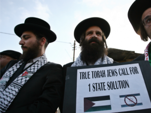 Members of Neturei Karta, a fringe ultra-Orthodox sect in Israel, join a pro-Palestinian protest.