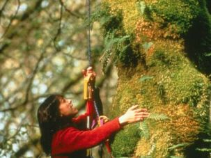 Getting Rooted: Nalini Nadkarni, a forest ecologist and professor, speaks at synagogues, church- es and Buddhist temples about science, spirituality and a special love of trees.