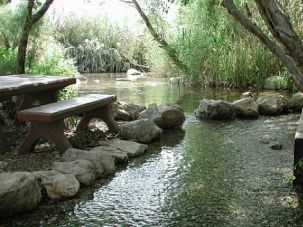 Dry Spot: The Einot Tzukim nature reserve is known for its lushness, which is provided by underground springs linked to the nearby Dead Sea. But as the sea shrinks, the springs are also drying up.