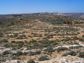Room to Grow: From Givat Ha?eytam, a West Bank hill, the Jewish settlement of Efrat is visible in the distance. The remote land is within Efrat?s municipal boundaries and could be developed without being identified as a new settlement.