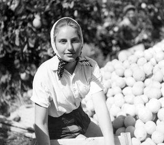 Orange You Glad? A young woman works in a kibbutz citrus grove, c. 1944.