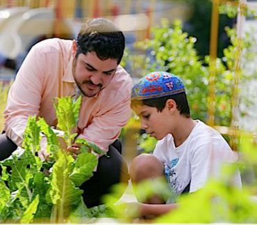 Rabbi Noah Farkas and a student check vegetables in the synagogue?s garden to see if they are ready to be donated to a local food bank.