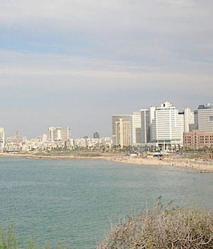 There were many witnesses to an alleged gang rape on a Tel Aviv beach.