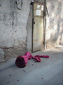 Leah Kohlenberg, ?Fallen Roses?