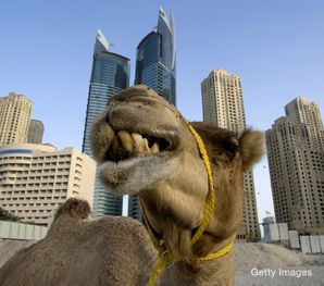 SAND CASTLES: Dubai's rising skyline is a sign of the emirate's emergence as a regional economic hub. But with a boycott of Israel still on the books, analysts are asking how the shifting financial sands will affect the Jewish state.