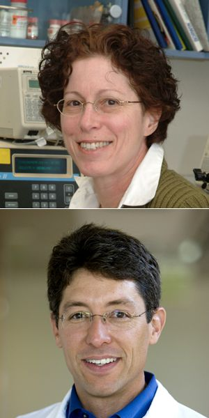 Investigators: Dr. Orly Elpeleg (above) and Dr. Joseph Gleeson (below) were on separate teams that published findings regarding a mutation that causes Joubert syndrome among Ashkenazi Jews.