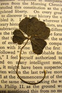Curious Mementos: People leave the strangest things in the pages of old books: love letters, four-leaf clovers, recipes and prescriptions, among others.